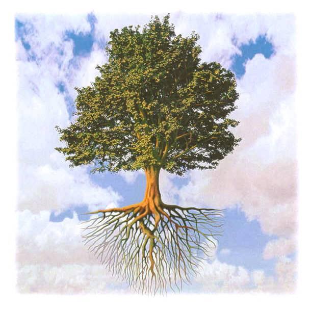 albero-della-vita2